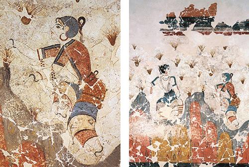l'histoire du Safran